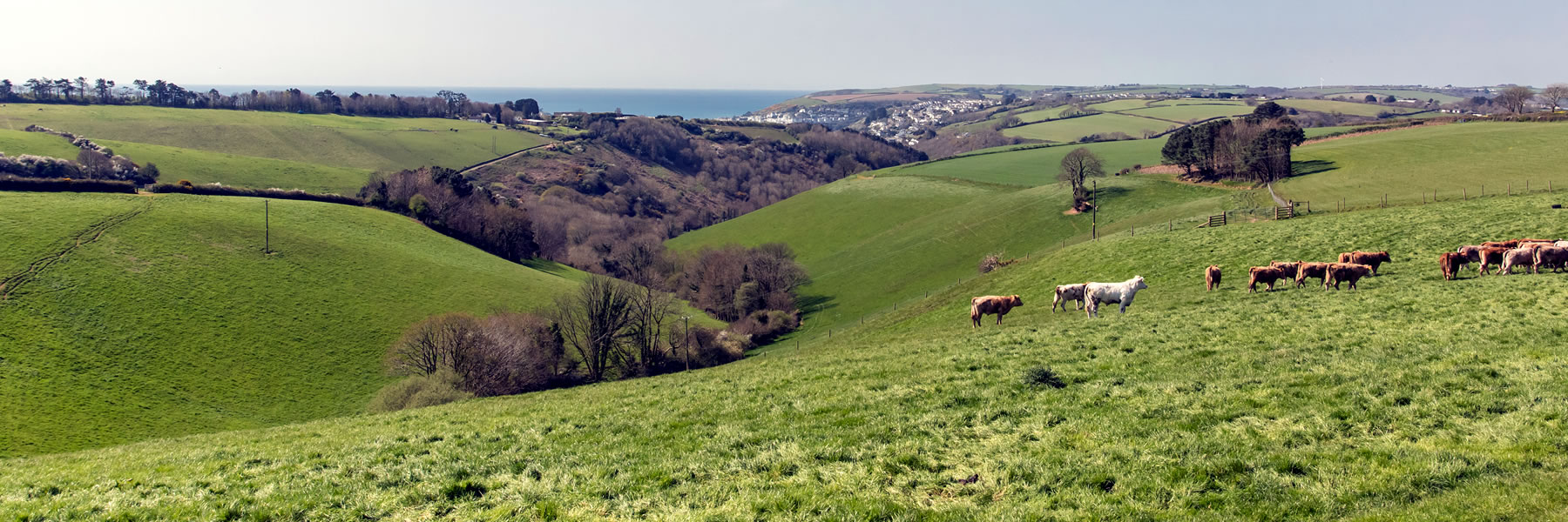 Holiday Cottages near the Sea